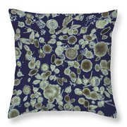 Radiolarian Ooze Lm Throw Pillow