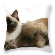 Ragdoll Kitten And Lionhead Rabbit Throw Pillow