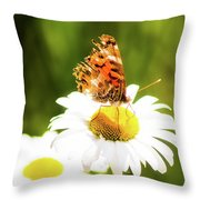 Raggedy Butterflly Throw Pillow