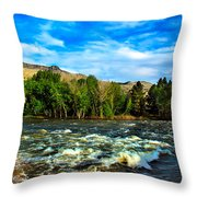 Raging River Throw Pillow by Robert Bales
