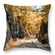 Rail Road Cut Throw Pillow