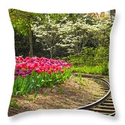 Railroad Beauties Throw Pillow