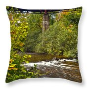 Railroad Bridge 7827 Throw Pillow by Michael Peychich