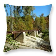 Rails To The Past Throw Pillow