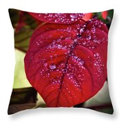 Rain Drops On Red Leaves Throw Pillow