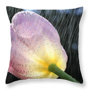 Rain Falling On A Tulip Throw Pillow