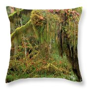 Rain Forest Crocodile Throw Pillow