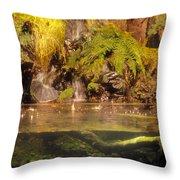 Rain Forest Pool Throw Pillow