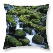 Rain Forest Stream Throw Pillow