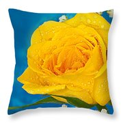 Rain On A Yellow Rose Throw Pillow
