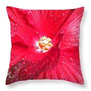 Rain On Red Throw Pillow
