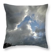 Rain Or Shine Throw Pillow