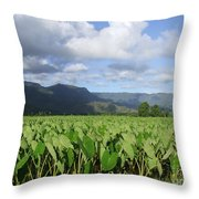 Rain Over A Hanalei Taro Field Throw Pillow
