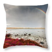Rainbow By The Lake Throw Pillow