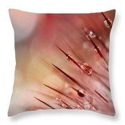 Rainbow Cactus Throw Pillow