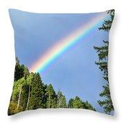 Rainbow Closeup Throw Pillow