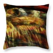 Rainbow Falls Throw Pillow by Jack Zulli