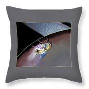 Rainbow Fly Throw Pillow
