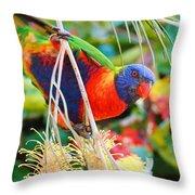 Rainbow Lorikeet 2am-8374 Throw Pillow