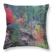 Rainbow Of The Season Throw Pillow by Heather Kirk