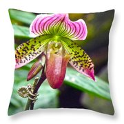 Rainbow Orchid Throw Pillow
