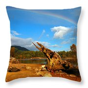 Rainbow Over Affric Throw Pillow