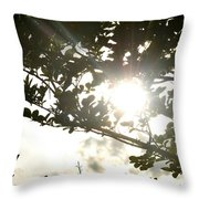 Rainbow Rays Throw Pillow