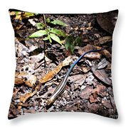Rainbow Skink Throw Pillow