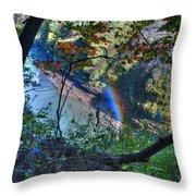 Rainbow Through The Rough Throw Pillow