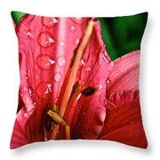 Raindrop Row Throw Pillow