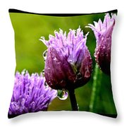 Raindrops On Chives Triptych Throw Pillow
