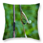 Raindrops On Grass Throw Pillow