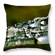 Raindrops On Lily Leafs Throw Pillow