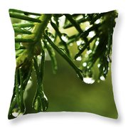 Raindrops On Pine Needles Throw Pillow