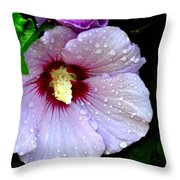 Raindrops On Roses Of Sharon Throw Pillow