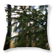 Raindrops On The Spruce Twig Throw Pillow