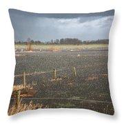 Rainfall Throw Pillow