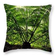 Rainforest Backlight Throw Pillow