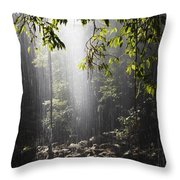 Rainforest, Bellingen, Australia Throw Pillow