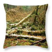 Rainforest Dusting Throw Pillow