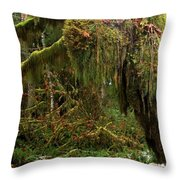 Rainforest Jaws Throw Pillow
