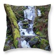 Rainforest Waterfall Throw Pillow