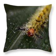 Raining On My Parade Throw Pillow
