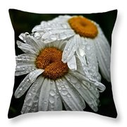 Rainy Day Daisies Throw Pillow