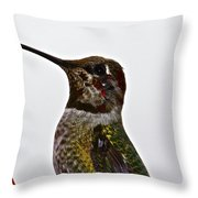 Rainy Day Guest Throw Pillow