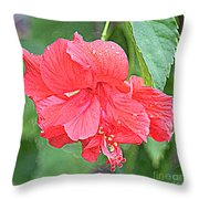 Rainy Day Hibiscus Throw Pillow