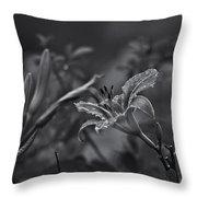 Rainy Day Lily Throw Pillow