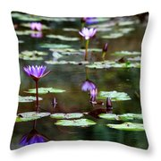 Rainy Day Lotus Flower Reflections Iv Throw Pillow