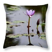 Rainy Day Lotus Flower Reflections V Throw Pillow