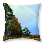 Rainy Day Rainbow Throw Pillow